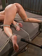 Ashley Fires Submits!, pic #9