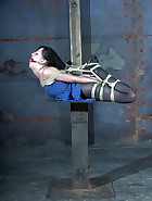 Elise Tied Up High, pic #14