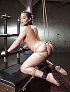 Cane Training Dani Daniels, Day 3, pic #4